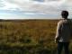 nano-air-landscape