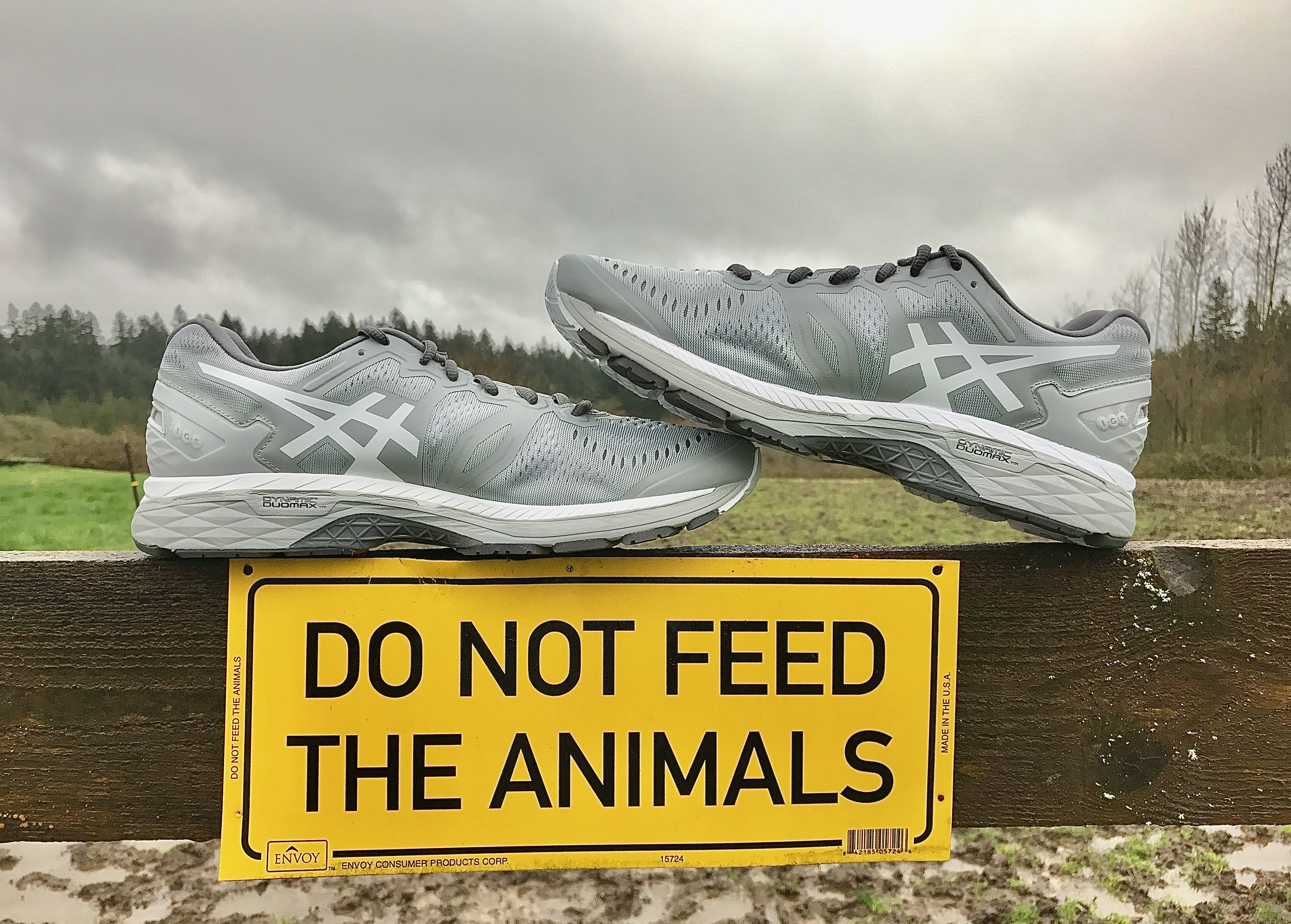 Asics GEL-Kayano 23 - Fitness Review | Busted Wallet